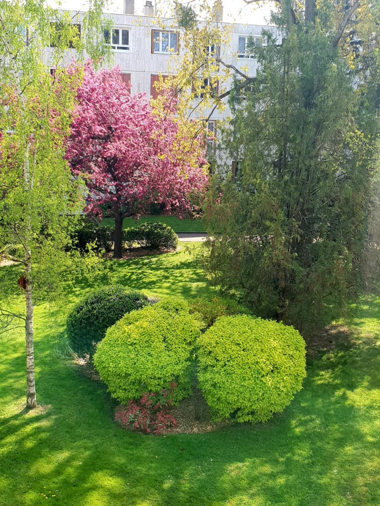 printemps jardin